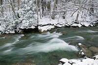 River running through snow covered trees, Stowe, Vermont, USA.