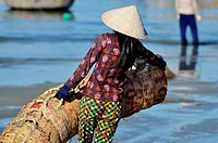 Vietnam, Mui Ne, cleaning fish basket et on the beach.