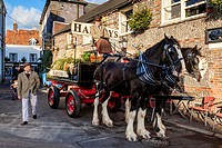Harveys Brewery Dray Outside The John Harvey Tavern, Lewes, Sussex, England.