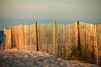 A fence in the sand dunes in Cape May, is lit be the first rays of the sun. The fence is used to prevent beach and dune erosion.