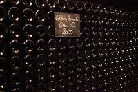 OLD VINTAGE WINES IN THE JADOT WINE CELLARS, CORTON POUGET GRAND CRU 2000, COTE-D'OR (21), BOURGOGNE, FRANCE