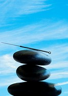 Acupuncture needle.