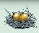 Illustrative image of golden eggs in nest made of barbed wire representing investment protection.