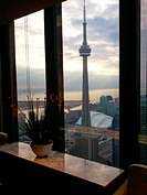 A plant sitting on top of a marble table overlooking the city of Toronto with the CN Tower clearly visible. Toronto, Ontario, Canada.