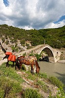 Albania, Permet-area, Bredhi i Hotoves National Park, Lengarices River, Ottoman-era stone bridge.