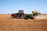 Agriculture - A Case IH tractor and Great Plains 40-foot twin row planter with bulk seed hopper plants grain corn in a conventionally tilled and bedde...