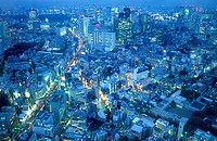 Panoramic. North of the city.Tokyo city, Japan, Asia.