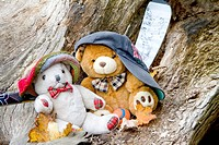 Two Teddy Bears resting on a dead tree after a hard game of hockey ball.