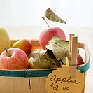 Studio shot of basket of apples