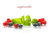 Isolated fresh berries with mint (with sample text)