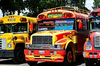 """Row of brightly coloured busses, affectionally known as """"""""chicken busses"""""""" stand in the parking lot in Antigua, Guatemala, Central America."""