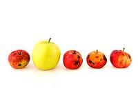 Äpfel / Apple