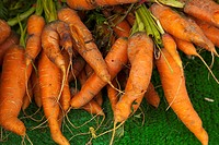 Carrots on display in farmers market