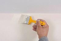 house painter
