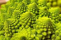Romanesco Broccoli, Tokyo Metropolis/Japan