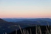 Evening mood in the Black Forest
