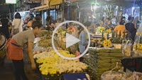 Woman seller of lotus flowers in Pak Khlong Talat , Flower market , Bangkok , Thailand. Pak Khlong Talat is a market in Bangkok, Thailand that sells f...