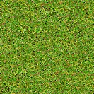Meadow Grass. Seamless Texture.