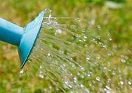 Water pouring from a blue watering can