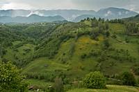 The Piatra Craiului, Piatra Craiului National Park in the southern carpathians, Romania