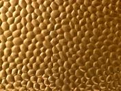 Textured Gold Metallic Surface