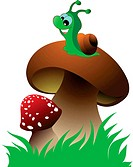 Funny green snail and two mushroom