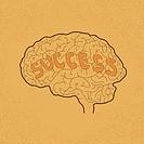 Brain Idea for Success