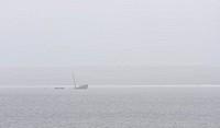 Ship wreck in mist in sea
