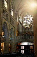 nave and rose window, Santiago Cathedral, Casco Viejo, Bilbao, province of Biscay, Basque Country, Spain, Europe.