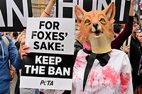 Queen guitarist, Brian May joins a rally on the eve of a parliament vote that if passed will allow packs of dogs to flush out foxes. Protestors say th...