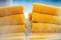 Street Food, Boiled Corn. . . . .