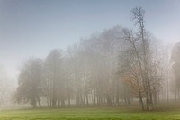 Fog in Chamarande, Essonne, Ile-de-france, France.