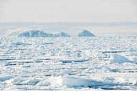 Sea ice and floe edge floating in front of the coast, Baffin bay, Nunavut, Canada.