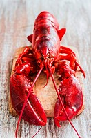 Cooked lobster on chopping board