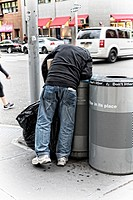 Unidentifiable Man Rummaging Through a Street Corner Trash Can, Manhattan, New York City. Most likely looking for deposit bottles and cans to return t...
