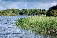 Lough Leane Lake, Killarney National Park, County Kerry; Ireland.