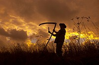 Farmworker with scythe Norfolk UK.