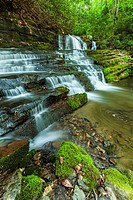 Waterfalls, Rhododendron Creek, Greenbrier, Great Smoky Mountains NP ,TN.