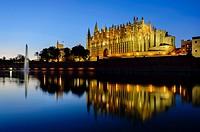 Cathedral at night in Palma, Majorca