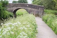 Cromford Canal, Peak District, Derbyshire, England, UK.