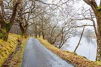 Road along river Orchy in the Glen Orchy, Argyll and Bute, Scotland, United Kingdom, Europe.