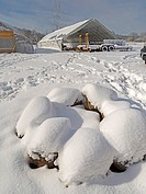 Winter snow covers an artisanal organic farm in Johnston, Rhode Island, USA.