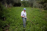 Small farmer working with a hoe in his organic farm in Prado del Rey, Cadiz, Andalusia, Spain. Sanchez produces in his farm vegetables and fruit witho...