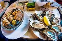 "France-Aquitaine-Gironde- Food- """"Bulos"""" and """"Huitres"""" at Bistrot """"Chez Jean-Mi"""" on """"Marché des capucins, at Bordeaux."