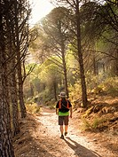 Hiker, Sierra Mijas mountain forest. Costa del Sol, Malaga province. Andalusia Spain. Europe.