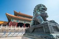 Beijing China - Detail of a bronze guardian lion statue (Shi) with the ornamented architecture of the Palace Museum in the background located in the F...