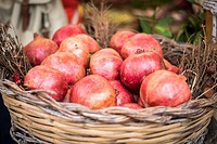 Rome, Italy- A basket of pomegranates for sale in Campo de' Fiori, the largest and oldest outdoor market in Rome. It is located south of Piazza Navona...