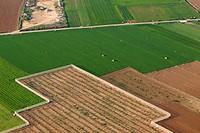 Aerial view of farm fields, Mallorca field, Balearic Islands, Spain.
