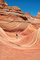 Walking in The Wave, Vermilion North Coyote Buttes, Paria Canyon-Vermilion Cliffs Wilderness, Vermilion National Monument, Arizona, USA.