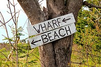 an old wharf beach sign nailed to a tree in Nova Scotia.